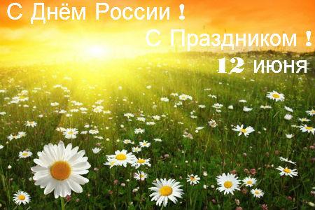 12 июня! С <b>днем</b> <b>России</b>. С праздником! Ромашковое поле гифка анимация