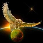 <b>Сова</b> <b>с</b> расправленными крыльями сидит на планете гифка анимация