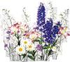 Букет <b>полевых</b> <b>цветов</b>. Ромашки, люпин, травы гифка анимация