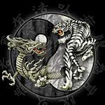 Битва дракона <b>с</b> <b>тигром</b> гифка анимация