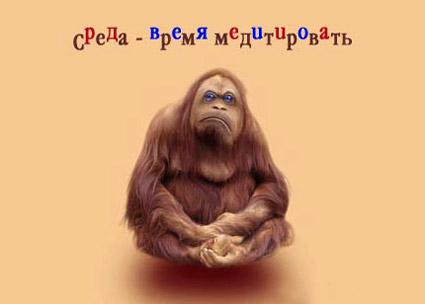 <b>Открытки</b>. <b>Среда</b>! Время медитировать гифка анимация