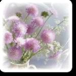 <b>Полевые</b> <b>цветы</b> розовыми шариками гифка анимация