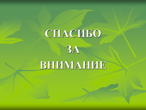 Спасибо за внимание! <b>Фон</b> <b>зеленой</b> листвы гифка анимация