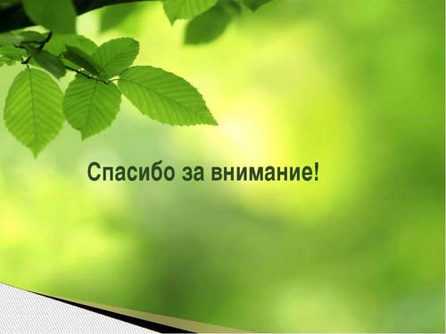 Спасибо за внимание! <b>Фон</b> <b>зеленый</b> с веткой дерева гифка анимация