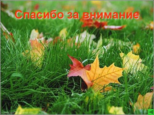 Спасибо за внимание! <b>Фон</b> - <b>зеленая</b> трава с желтой листвой гифка анимация