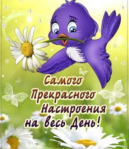 Добрый день Открытка Самого прекрасного настроения на весь день! Птич... смайлик гиф анимация
