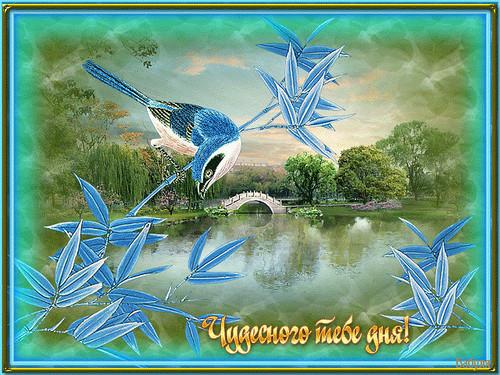 Добрый день Чудесного тебе дня! Птичка на ветке смайлик гиф анимация