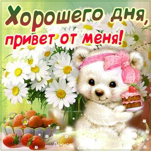 Открытка. Хорошего дня! <b>Привет</b> <b>от</b> <b>меня</b>!Белый медведь сре... гифка анимация