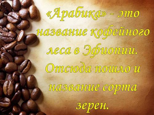 17 апреля. Международный день <b>кофе</b>. Зерна <b>кофе</b> Арабика гифка анимация