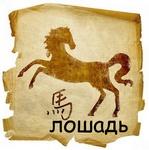 <b>Лошадь</b> гифка анимация