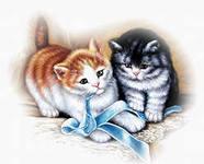 <b>Котята</b> играют с ленточкой гифка анимация