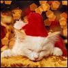 <b>Новогодний</b> кот засыпает гифка анимация