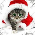 <b>Новогодний</b> котенок гифка анимация