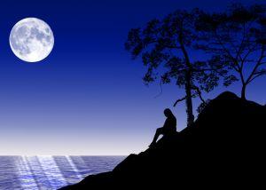 <b>Мужчина</b> под соснами освещен луной гифка анимация