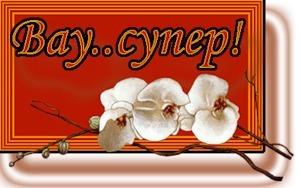 Вау! Супер! <b>Орхидеи</b> гифка анимация