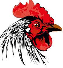 Куры, петухи, цыплята смайлики гифки анимации
