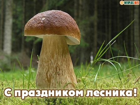 <b>С</b> <b>Днем</b> <b>Работников</b> <b>Леса</b>! Белый гриб гифка анимация