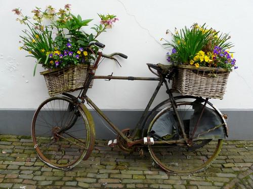 Фото велосипед с цветами