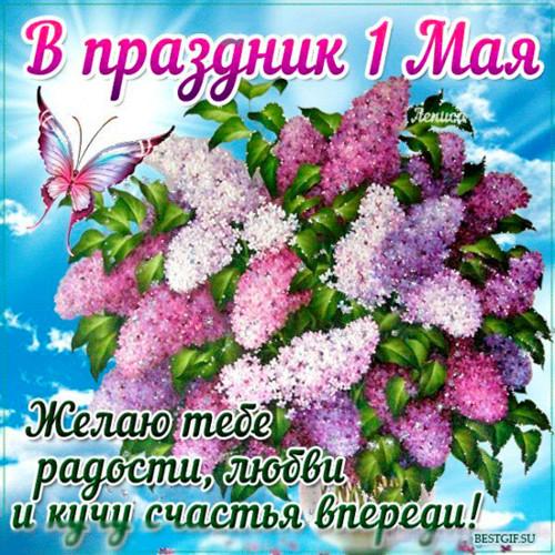 Открытка. В праздник 1 мая! Желаю <b>радости</b>, любви <b>и</b> <b>счастья</b> гифка анимация