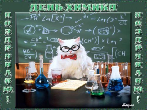 <b>С</b> <b>Днем</b> <b>Химика</b>! Поздравляю! Белый кот проводит опыты гифка анимация