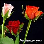 <b>Татьянин</b> день. Розы для <b>Татьяны</b> гифка анимация