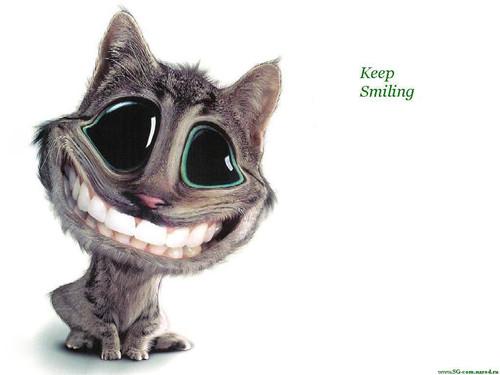 <b>С</b> <b>Днем</b> <b>улыбки</b>! <b>Улыбка</b> кота гифка анимация