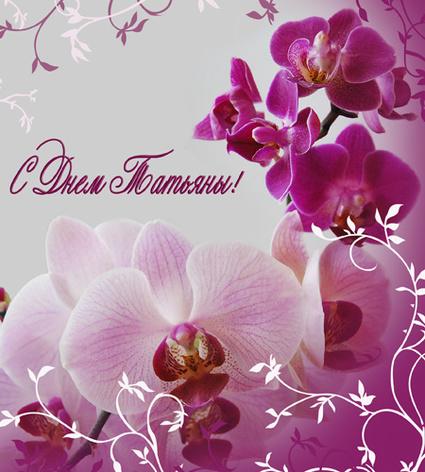 С днем <b>Татьяны</b>!<b>Татьянин</b> день. Розовые орхидеи гифка анимация